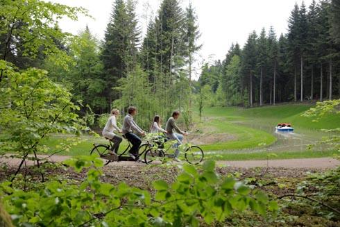 france-poitou-charentes - center parcs le domaine du bois aux