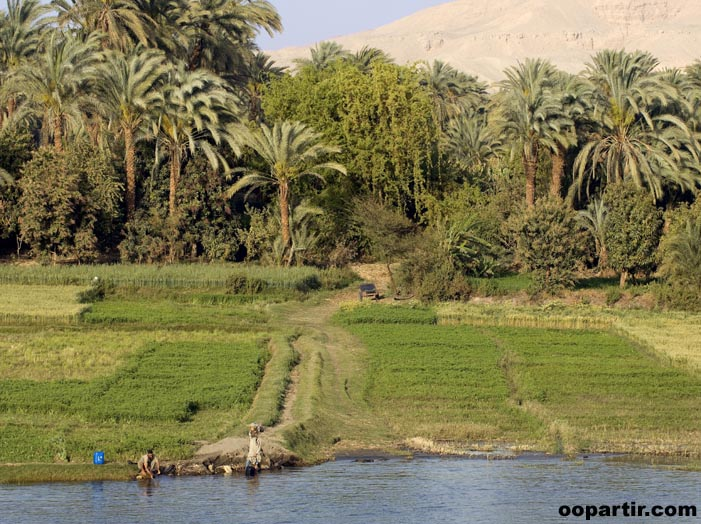 Sur une rive du Nil © Egyptian Tourist Authority