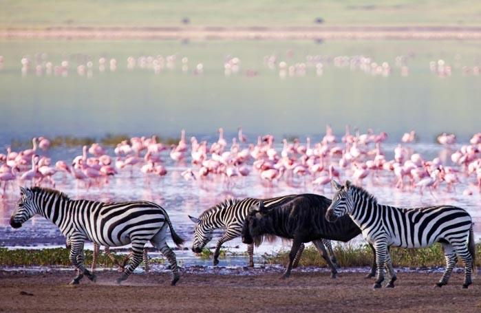 office de tourisme tanzanie paris